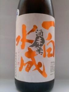 一白水成 酒未来 純米吟醸(冷飯と味噌汁)